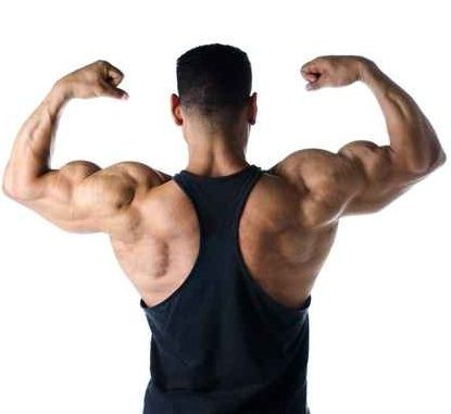 Steroid Anabolic